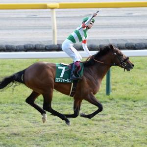 皐月賞は◎エフフォーリア!!!相手に人気薄のアノ馬を指名します