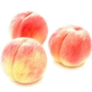 オオカムヅミ ― 日本神話に登場する神となった桃の実 ―