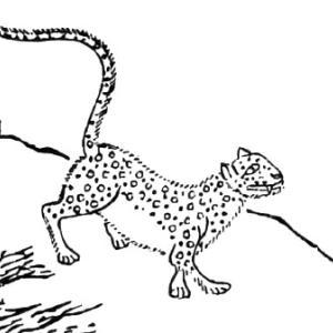 孟極(モウキョク) ― 中国に伝わる白い豹のような怪獣 ―