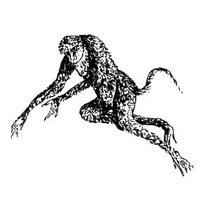 雍和(ヨウワ) ― 中国に伝わる黄色い猿のような怪獣 ―