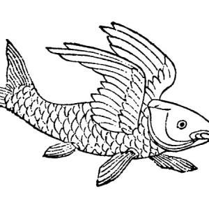 䱻魚(カツギョ) ― 中国に伝わる翼の生えた魚 ―