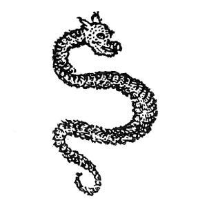 琴虫(キンチュウ) ― 中国に伝わる獣の頭を持つ怪蛇 ―