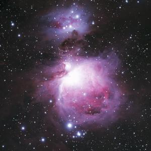 オリオン大星雲(M42)(2020/11/21撮影)