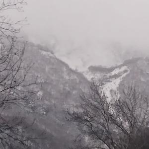 北海道は、バイクを冬眠させます。