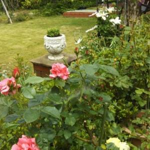 O宅のお庭