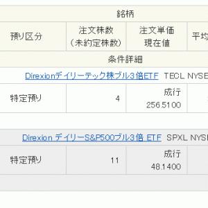 15万円入金 からの SPXL & TECL購入 急落に誘われて....