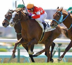 レッドクーゲル、次走は、町田Sで、ほぼ決定。