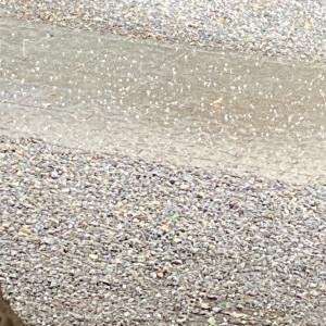 大きな雹が襲いかかるゴールデンウィークの川越氷川神社