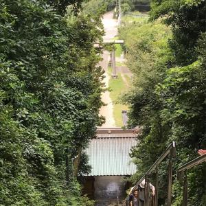 ストーカー続出!中々逢えない神主さんに頂く御朱印求めて洲崎神社へ。