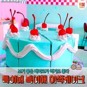 【韓国デザート】韓国の可愛いくて変わったケーキまとめ♡ あなたはどれを食べたい?♡