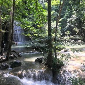カンチャナブリー旅行 タイで一番美しい滝 ドクターフィッシュもいる「エラワンの滝」|かかって来なさい!タイランド