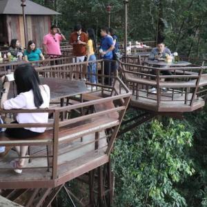 チェンマイ 大自然の中の空中カフェ「The Giant 」|掛かって来なさい!タイランド