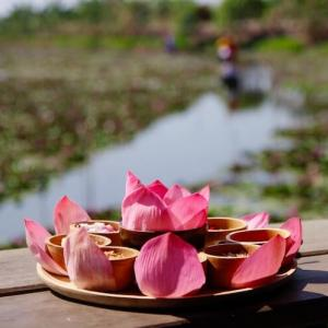 ナコンパトムの赤い蓮 バンコクからロットゥーでの行き方「 Red Lotus Floating Market」|かかって来なさい!タイランド