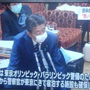 安倍総理のマスクに違和感(/≧◇≦\)