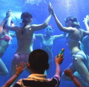 【画像】水族館トイレ、性癖が歪みそうwwww