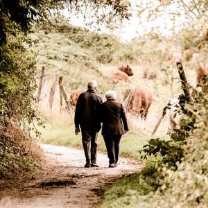 退職後の幸せは、どれだけ他の人と付き合う時間をたくさん持てるかどうか。