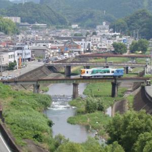 お出掛け 静岡県 二俣城