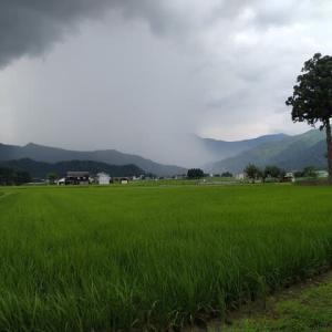 梅雨明けが7/14日に北陸地方に出た