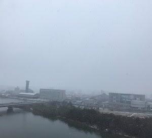 1月18日 雪景色