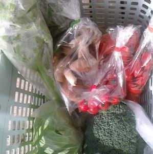 本日の野菜セット12月5日