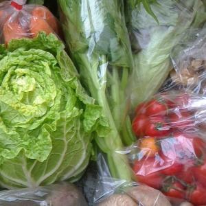 本日の野菜セット12月24日
