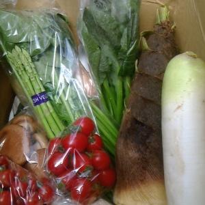 本日の野菜セット4月25日