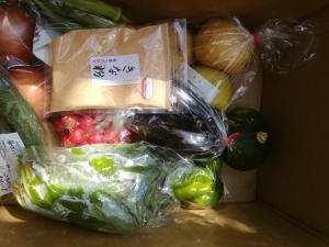 野菜セット8月8日