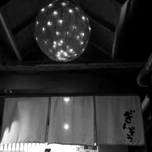 盛岡で失敗しないおひとりさま「日本酒バル Gin蔵」