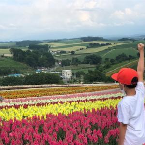 【車中泊】トマム〜富良野〜美瑛へ2泊3日車中泊の旅へ行ってきました!