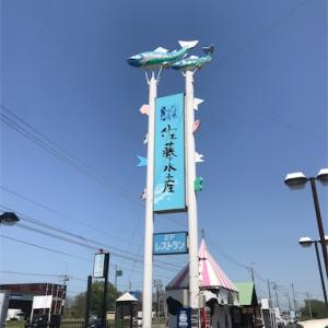 【石狩】佐藤水産のおにぎりとリピートしまくりのドレッシングについて