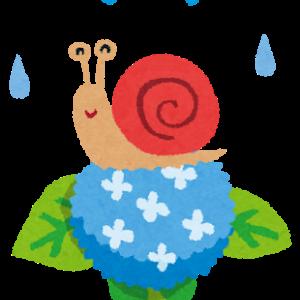 ★☆酢利夢ちゃん弁当2021☆★3⃣雨に濡れても・・・