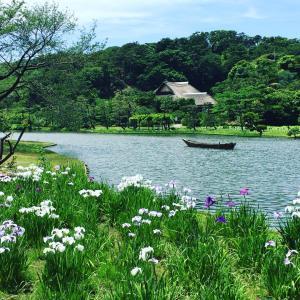三渓園 横浜市内とは思えない風景に癒されました