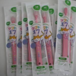 スーパーSALE オススメ!子供用歯ブラシ「タフト17」
