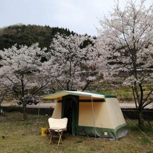桜キャンプ 最終戦