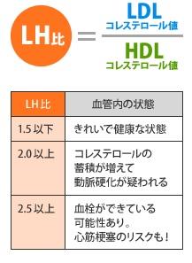 コレステロールは「LH比」が重要