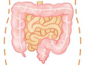 腸の汚れが全ての病の原因(万病一元論)