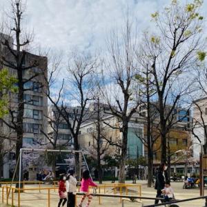 長閑な京都町中の公園