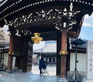 仏光寺・大師堂門脇の桜
