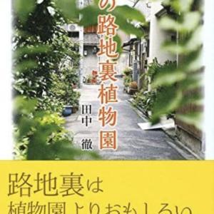 「京の路地裏植物園」