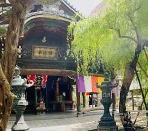 京都朝散歩 ~ 朝の六角堂