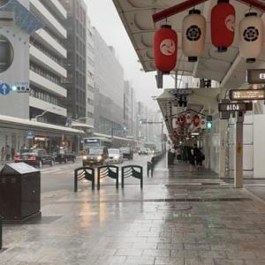 京都は終日雨、、、、