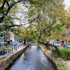 秋の気配が深まってきた、高瀬川