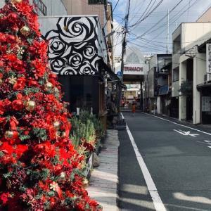 京都の街も徐々にクリスマス色に染まって、、、、