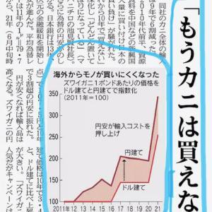 恐れるべきは、円高ではなく円安
