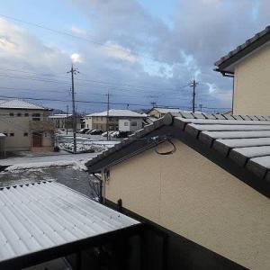 福井も雪化粧。
