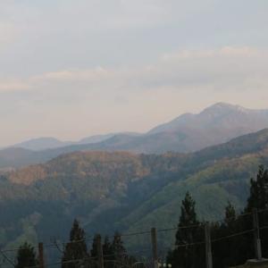 5月1日東山いこいの森
