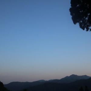 タニウツギのピンクがきれいです。東山いこいの森は未だ閉鎖中です。