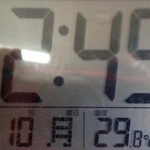 今年最高気温。