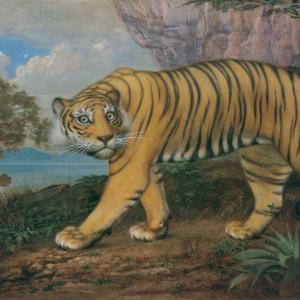 虎が集まるおうちと、失敗しちゃった