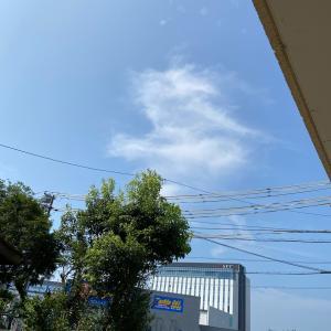 8月9日(日)夏らしい朝
